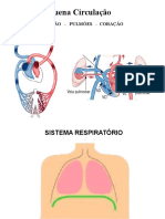 Sist.respiratorio.2016.2