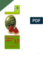 cultivo de sandia.pdf