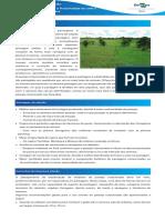 pastejo-mauricio.pdf