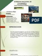 CAP III Organizacion de Trabajo de campo.pdf