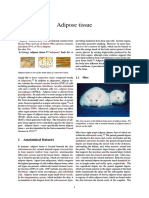 Adipose Tissue Index