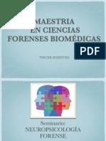 Seminario Neuropsicologia forense