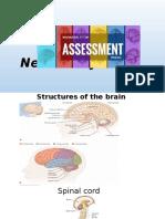 Neurologic System