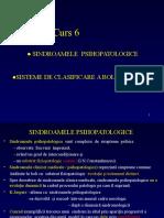 Curs 6 Sindromologie Psihiatric