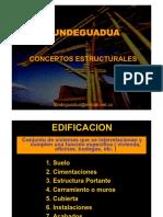 FUNDEGUADUA_Conceptos_estructurales