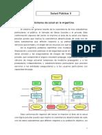 Sistema de Salud en Argentina Resumen