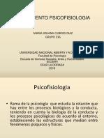 536 Fundamento Psicofisiologia Johana Cubides