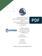 Informe Final De practica profesional mecánica automotriz
