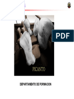 05-picanto-airbag.pdf
