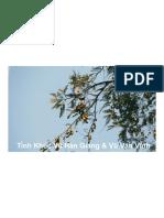 Tình Khúc Vũ Hàn Giang & Vũ Văn Vĩnh