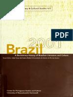 brazil2001revisi00univ.pdf