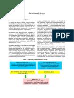 8_gestion_de_riesgo.pdf
