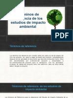 Términos de referencia de los estudios de impacto.pptx