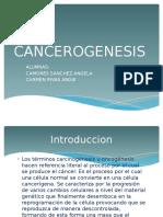 Cancerogenesis