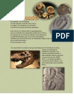 Geolibrospdf Geologia Historica 3