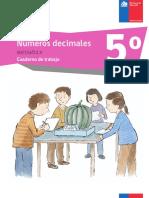 numeros decimales sexto66