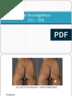 TOTAL DE PARES BIOMAGNÉTICOS.pdf