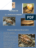 MOLUSCOS_ 2_13.pdf