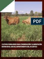 Cultivos Forrajeros Para Conservacion y Alimentacion Bovina en El Sur Del Departamento Del AtláNtico