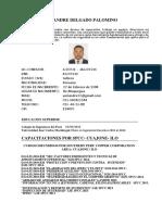 Cv Ing de Seguridad (1) (1)