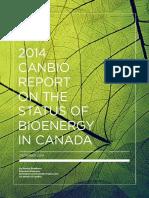 Status of Bio Energy.pdf