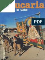 Araucaria-de-Chile-N-42-1988.pdf