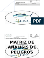 Matriz de Análisis de Peligro (1)
