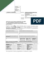 Modificado Fgui06!02!19 (2) Informes Bimestrales Ssp