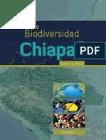 chiapas_vol2.pdf
