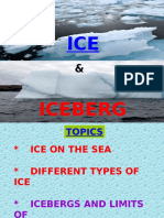 Ice and Icebergs