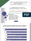 Presentación1 Proyectos Final inverisiones en plantas quimcas