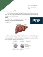 Hepatitis Interstitial Kronika