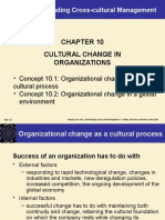 CCM culture change in organizations Chap10.ppt