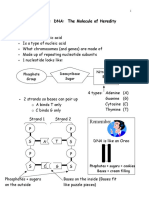 DNA notes.pdf