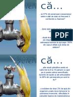 APA sau COCA-COLA.pps
