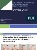 cicatrizacion.pptx