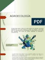AGROECOLOGÍA.pptx
