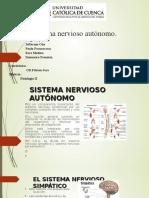 Sistema Nervioso Autónomo Expo
