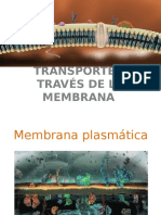 Seminario I Transporte a Través de La Membrana
