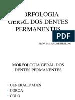 morfologia_geral_dos_dentes_permanentes.pdf
