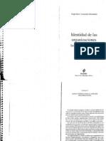 Etkin y Schvarstein - Identidad de Las Organizaciones - Invariancia y Cambio