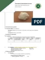 Formulario de Descripción de Una Roca (1)