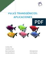 Trabajo Peces Transgénicos, Aplicaciones