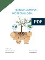 Fitorremediación Por Biotecnología