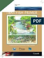 Baitfish Primer