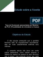 estudosobrexoxotas-130107202423-phpapp02