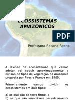 Ecossistemas amazônicos