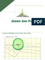 4. Seismic Data Processing