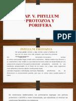 Cap.v. Phyllum Protozoa y Porifera