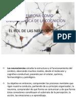 Clase 1 Neurociencias